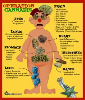 Cannabis-Benefits